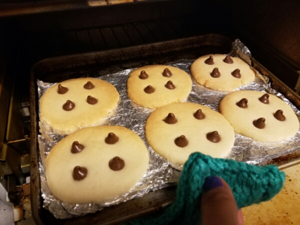 Baked cookies on toaster oven pan